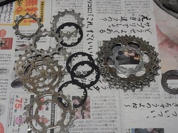 RIMG5525_R.JPG